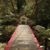 Mon voyage à Taipei à Taïwan: Wulai 4/6