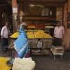 Mon voyage à Jaipur en Inde: La ville