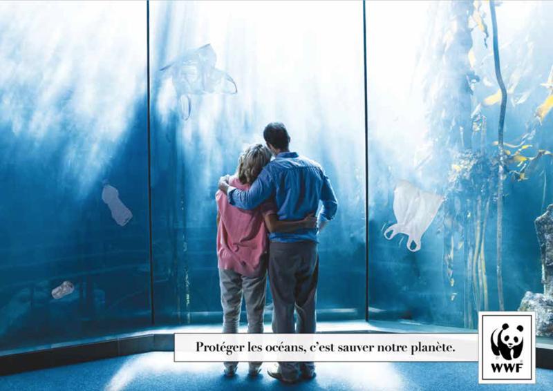 3ème prix gagnant 2016 concours Creative Awards WWF France et Saxoprint
