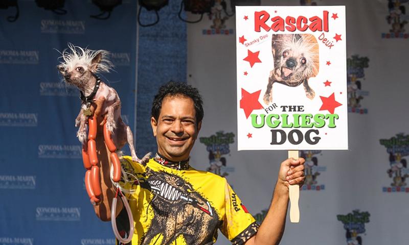 Gagnant 2015 concours du chien le plus laid du monde Winner 2015 World's Ugliest Dog