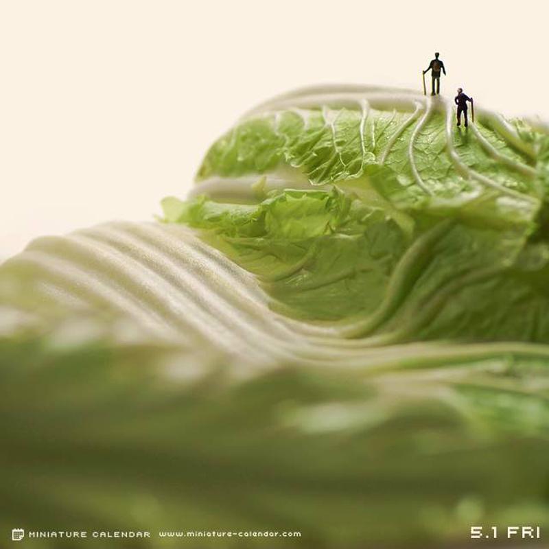 Artiste Photographe Tanaka Tatsuya