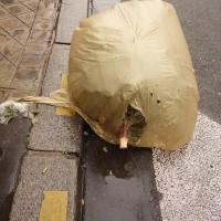 Cadavres de rues: Édition 2017 (seconde partie)