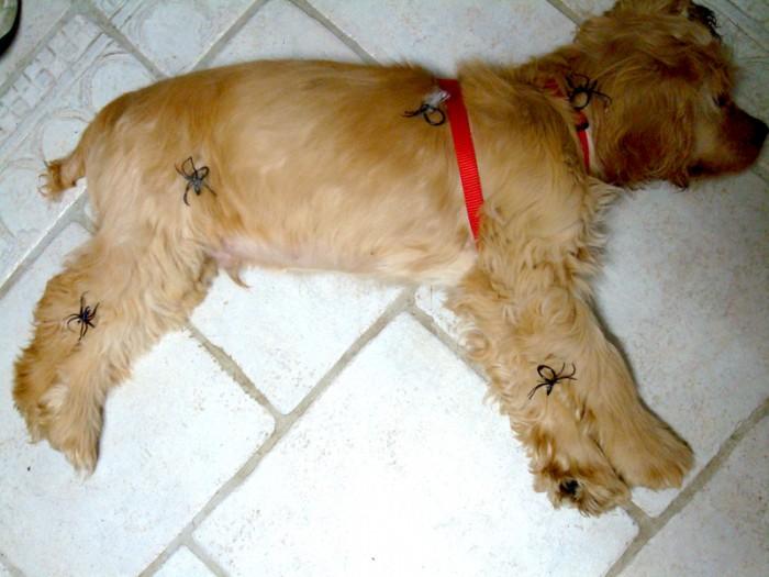 Ma photo du jour le 03-11-2007