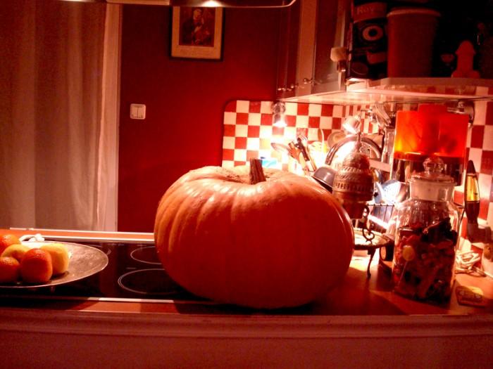Ma photo du jour le 10-11-2007