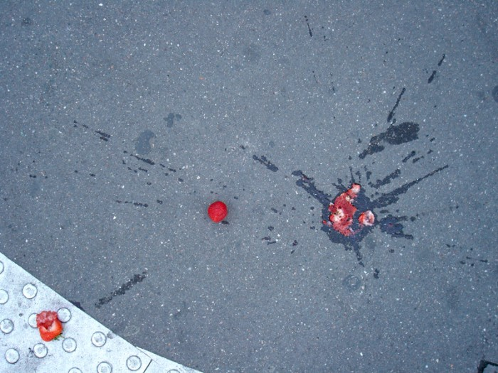 Ma photo du jour le 17-08-2007
