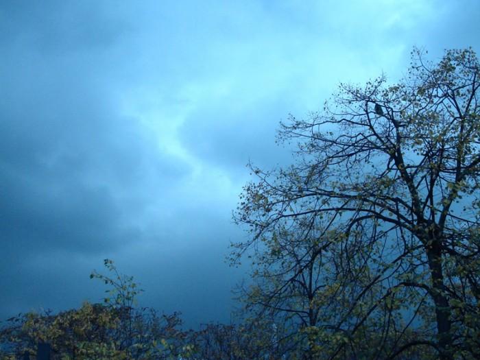 Ma photo du jour le 08-10-2009