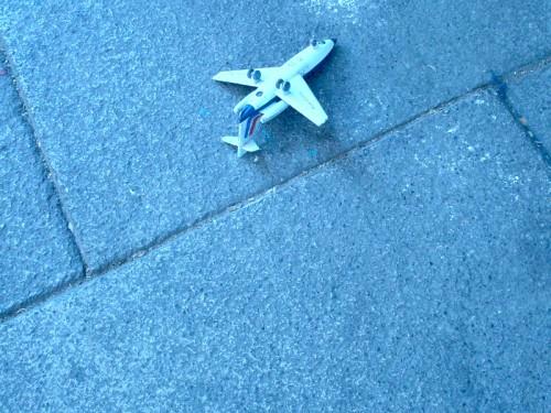 Ma photo du jour le 11-11-2009