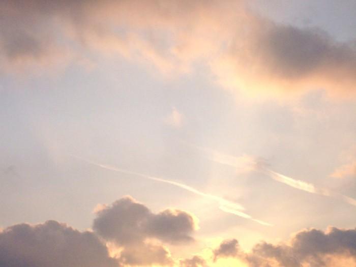 Ma photo du jour le 12-02-2010