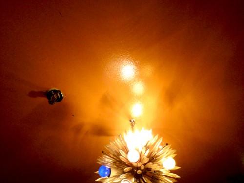 Ma photo du jour le 24-01-2011
