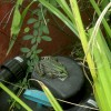 Ma photo du jour le 29-07-2011