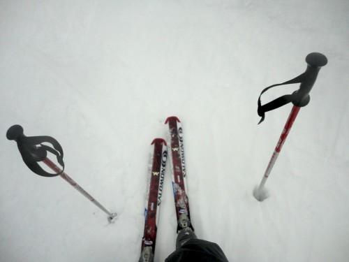 Ma photo du jour le 31-12-2011