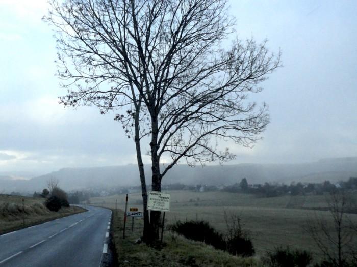Ma photo du jour le 05-01-2012