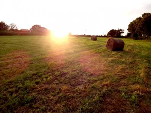 Ma photo du jour le 07-08-2012