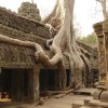 Mon voyage aux temples d'Angkor au Cambodge 2