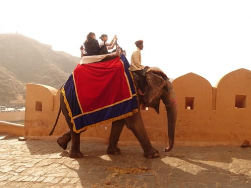 Mon voyage à Jaipur en Inde: Amber Fort et Jaigarh Fort