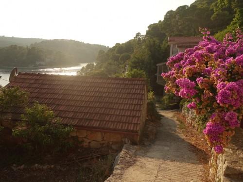 Mon voyage à Polace et au Parc Naturel de l'île de Mljet en Croatie