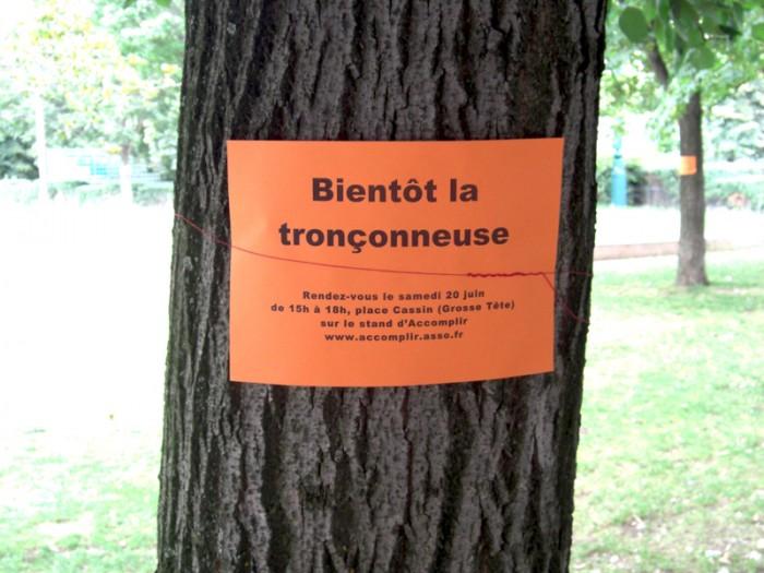 Arbres menacés de mort au Jardin des Halles à Paris