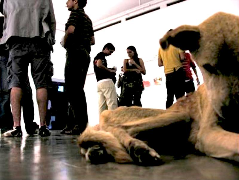 Qu'est ce que l'art, un chien mort? Guillermo Habacuc Vargas