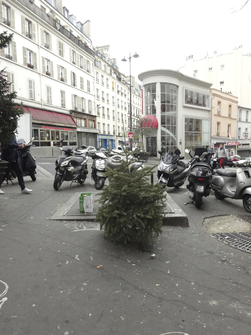 Cadavres de rues cadavre de sapin de Noël
