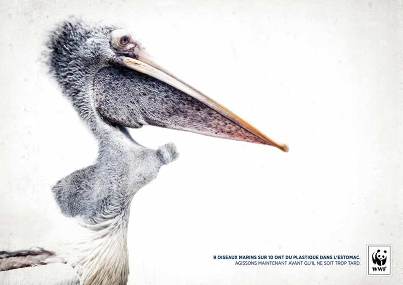 Second prix gagnant 2016 concours Creative Awards WWF France et Saxoprint