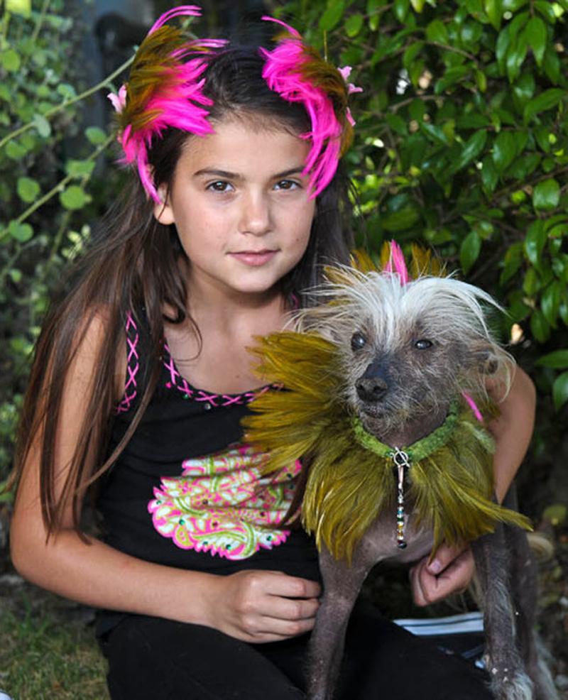Concours du chien le plus laid du monde en 2010