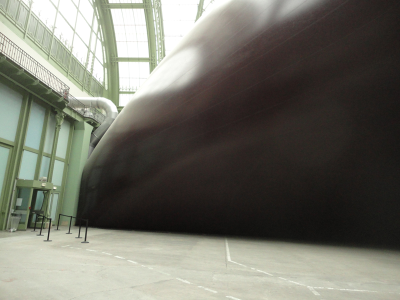 Exposition Monumenta au grand palais paris 2011