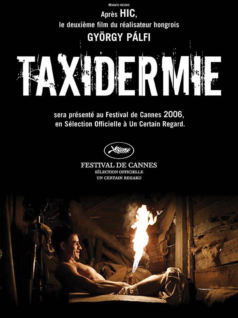 Cinéma Taxidermie