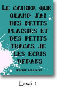 essai de couverture du livre de l'artiste peintre Jeremie Baldocchi