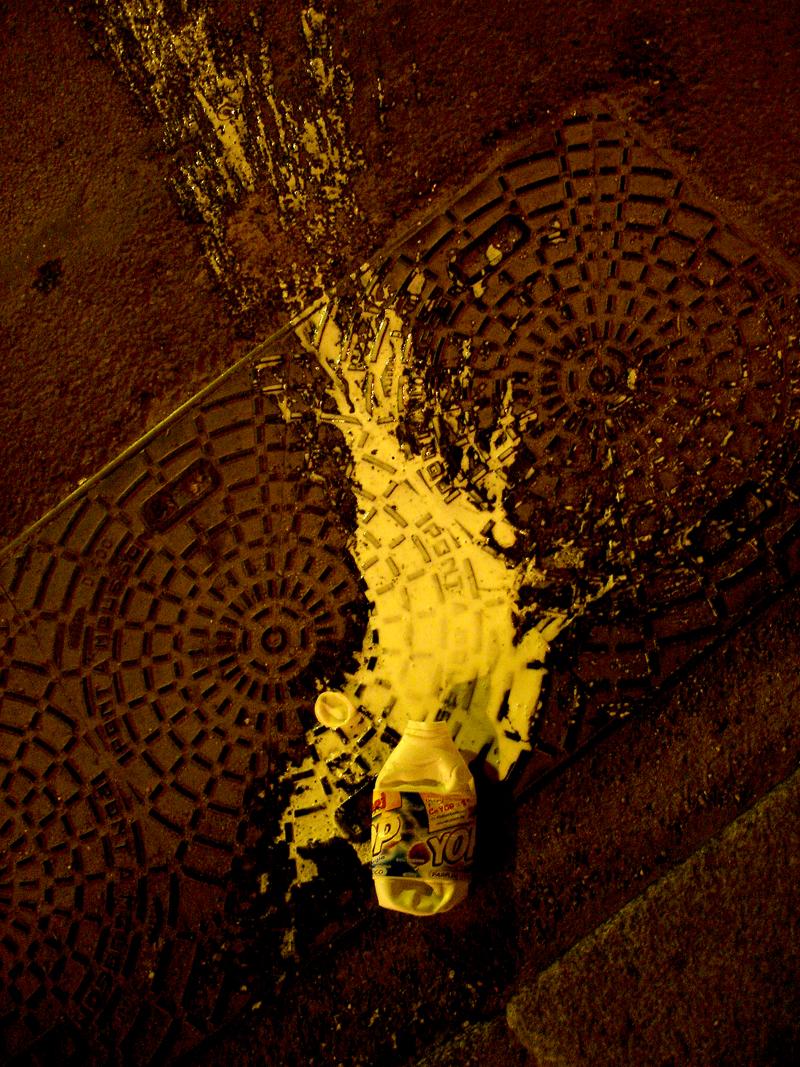 Photo du jour le 07-07-2005 du peintre contemporain Français Jérémie Baldocchi