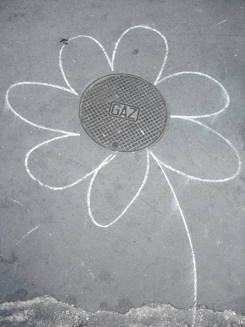 Photo du jour le 03-05-2007 du peintre contemporain Français Jérémie Baldocchi