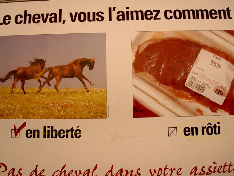 Photo du jour le 01-03-2008 du peintre contemporain Français Jérémie Baldocchi