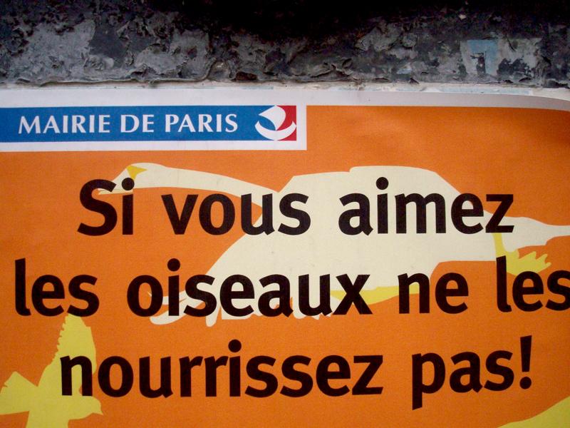 Photo du jour le 16-04-2009 du peintre contemporain Français Jérémie Baldocchi