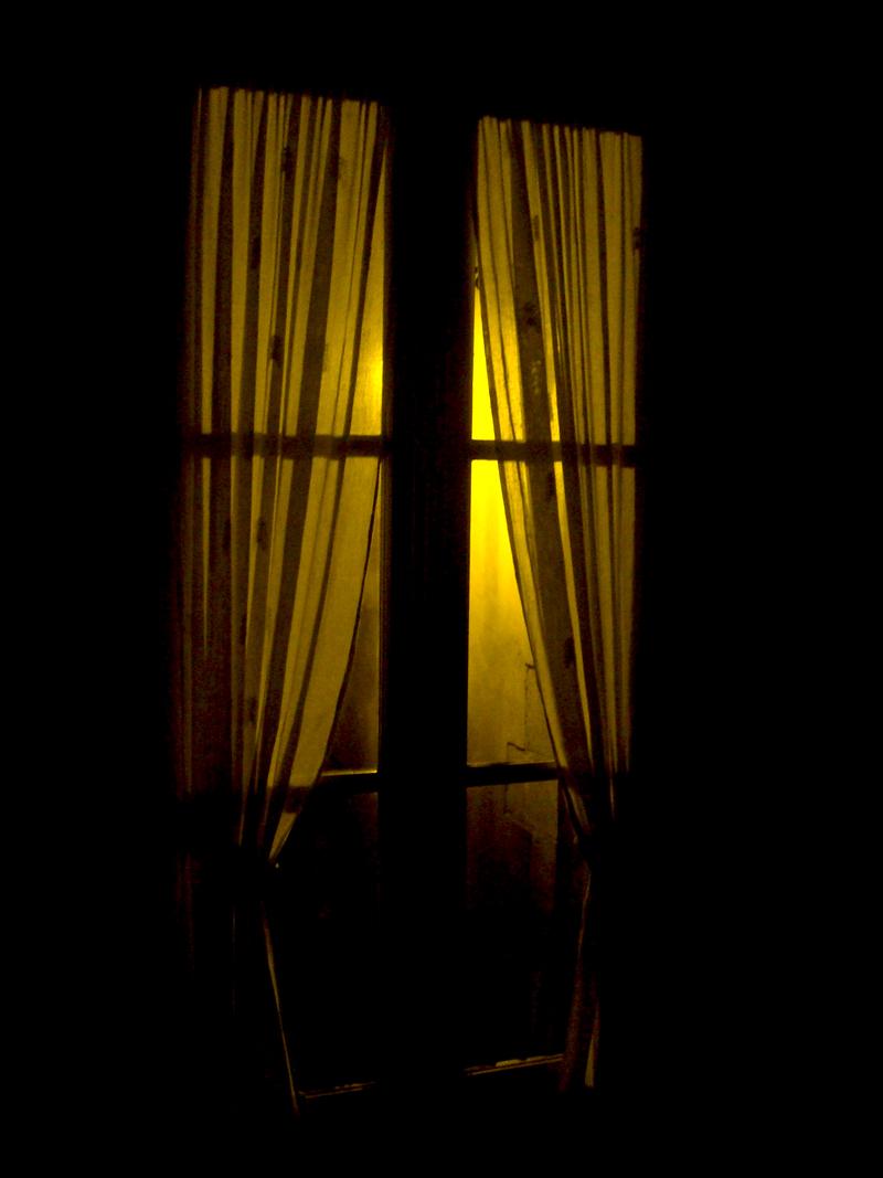 Photo du jour le 23-01-2009 du peintre contemporain Français Jérémie Baldocchi