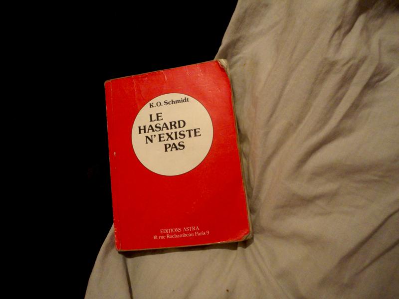 Photo du jour le 20-02-2011 du peintre contemporain Français Jérémie Baldocchi