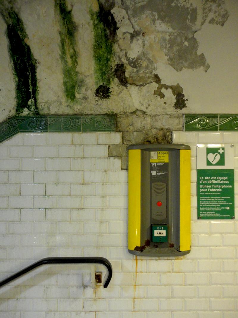 Photo du jour le 23-11-2011 du peintre contemporain Français Jeremie Baldocchi