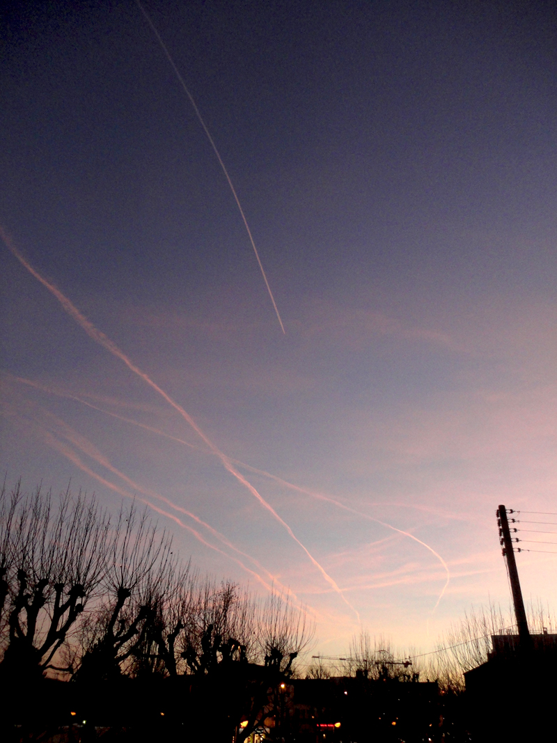 Photo du jour le 16-01-2012 du peintre contemporain Français Jeremie Baldocchi