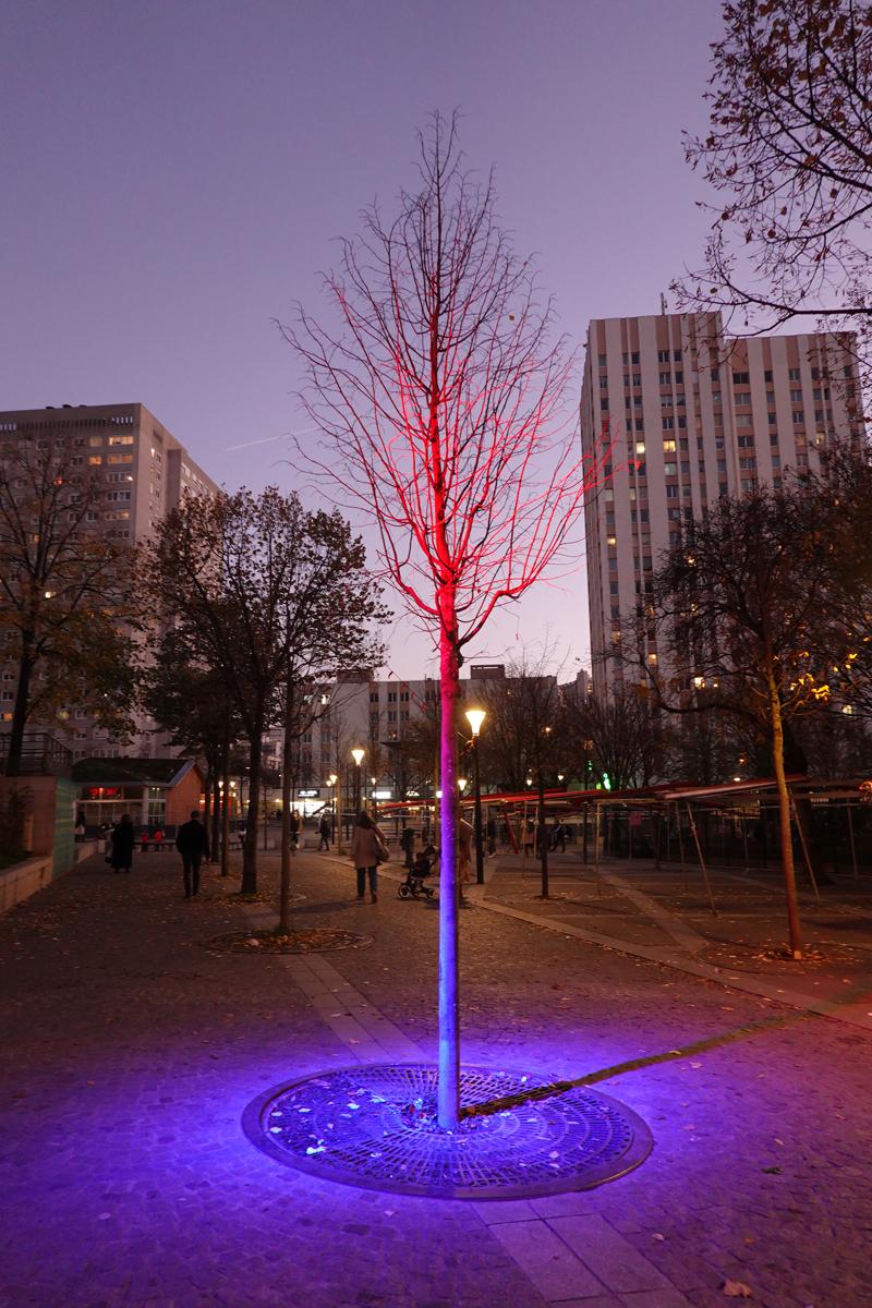 Photo du jour le 03-12-2020 du peintre contemporain Français Jérémie Baldocchi