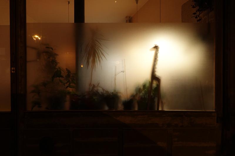 Photo du jour le 11-11-2020 du peintre contemporain Français Jérémie Baldocchi