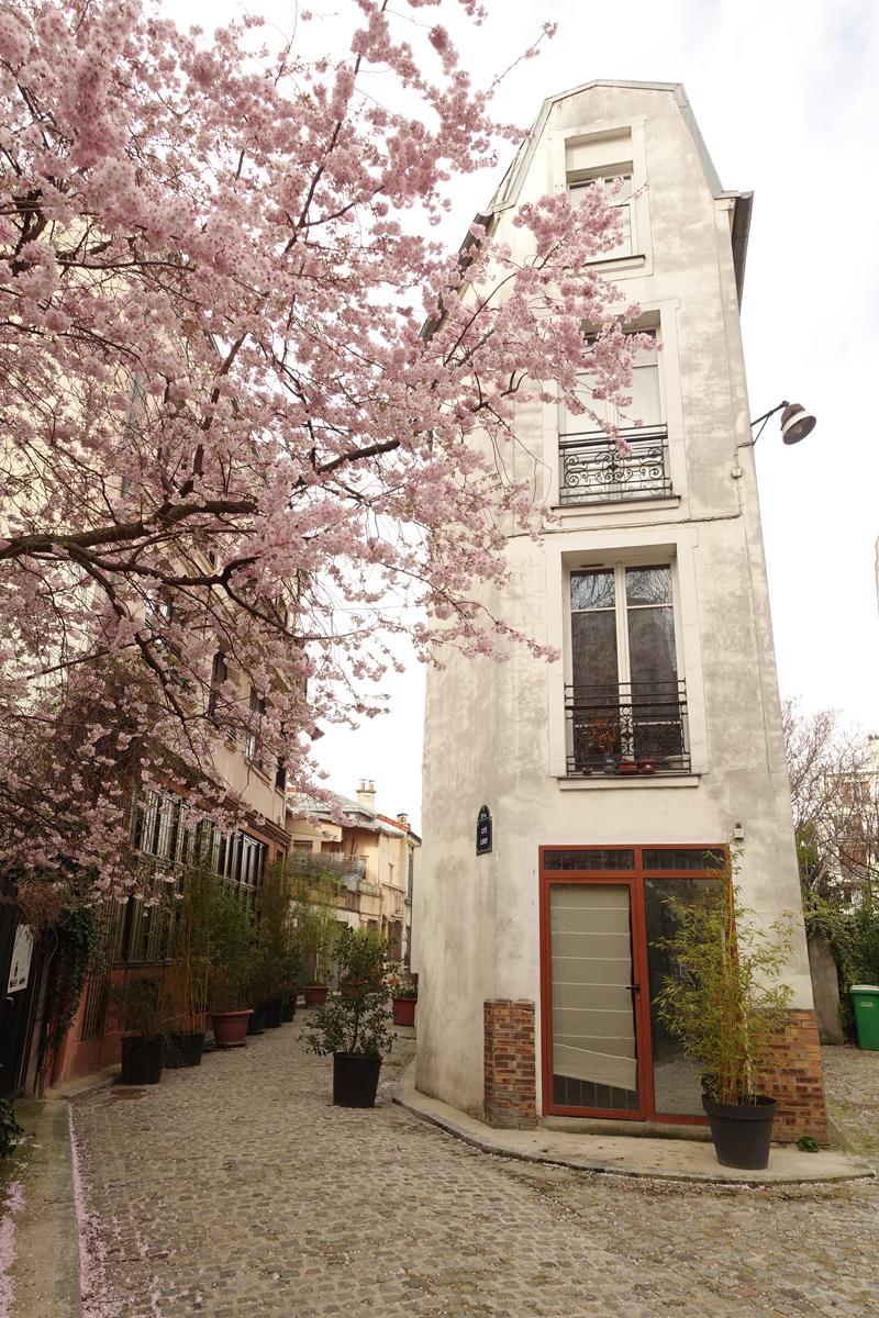 Photo du jour le 22-03-2020 du peintre contemporain Français Jérémie Baldocchi