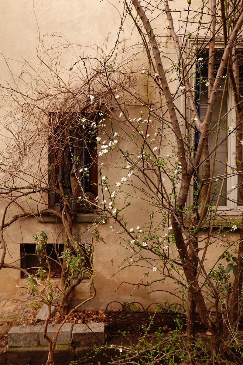 Photo du jour le 04-03-2021 du peintre contemporain Français Jérémie Baldocchi