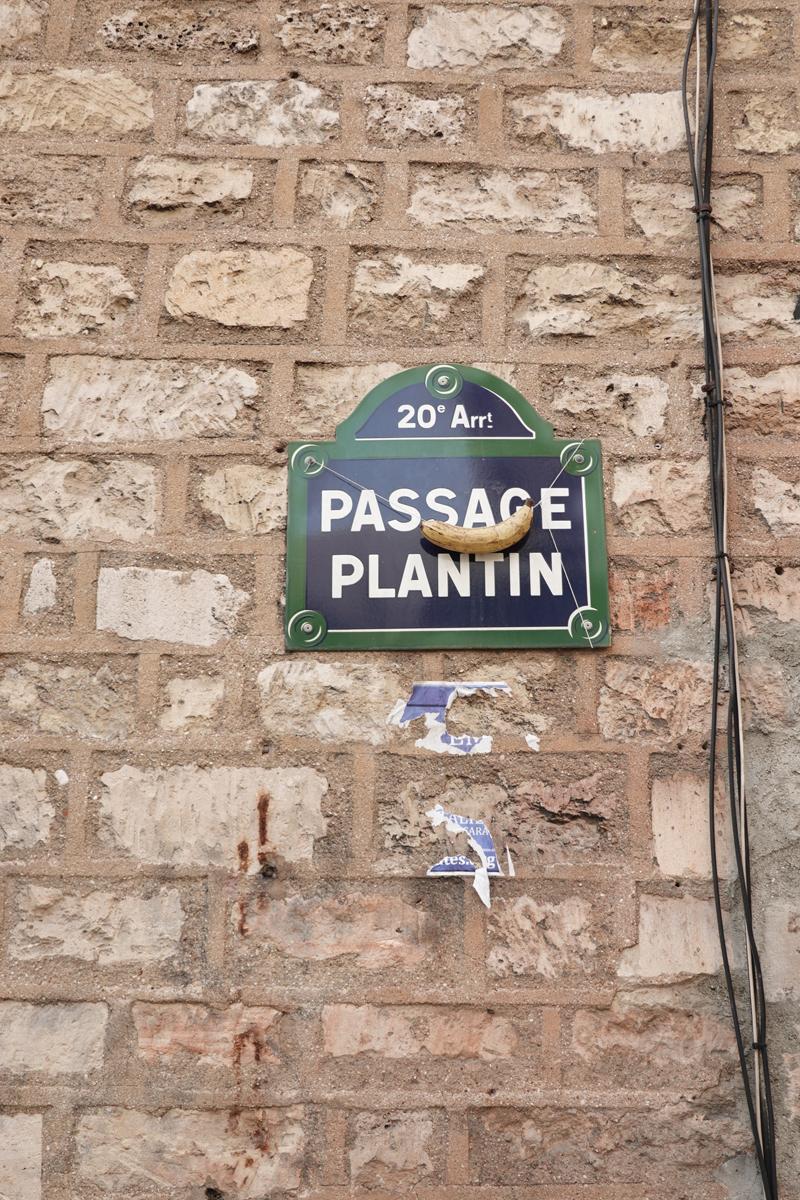 Photo du jour le 07-05-2021 du peintre contemporain Français Jérémie Baldocchi