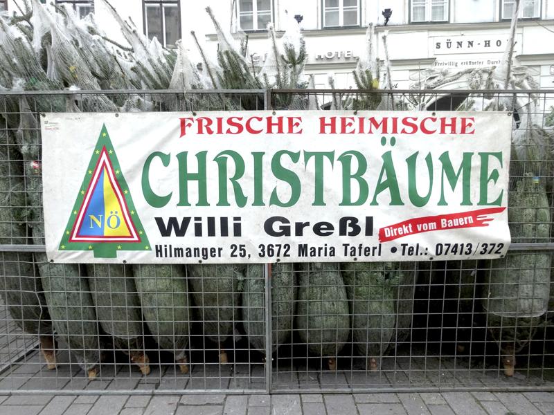 Mon voyage à Vienne en Autriche