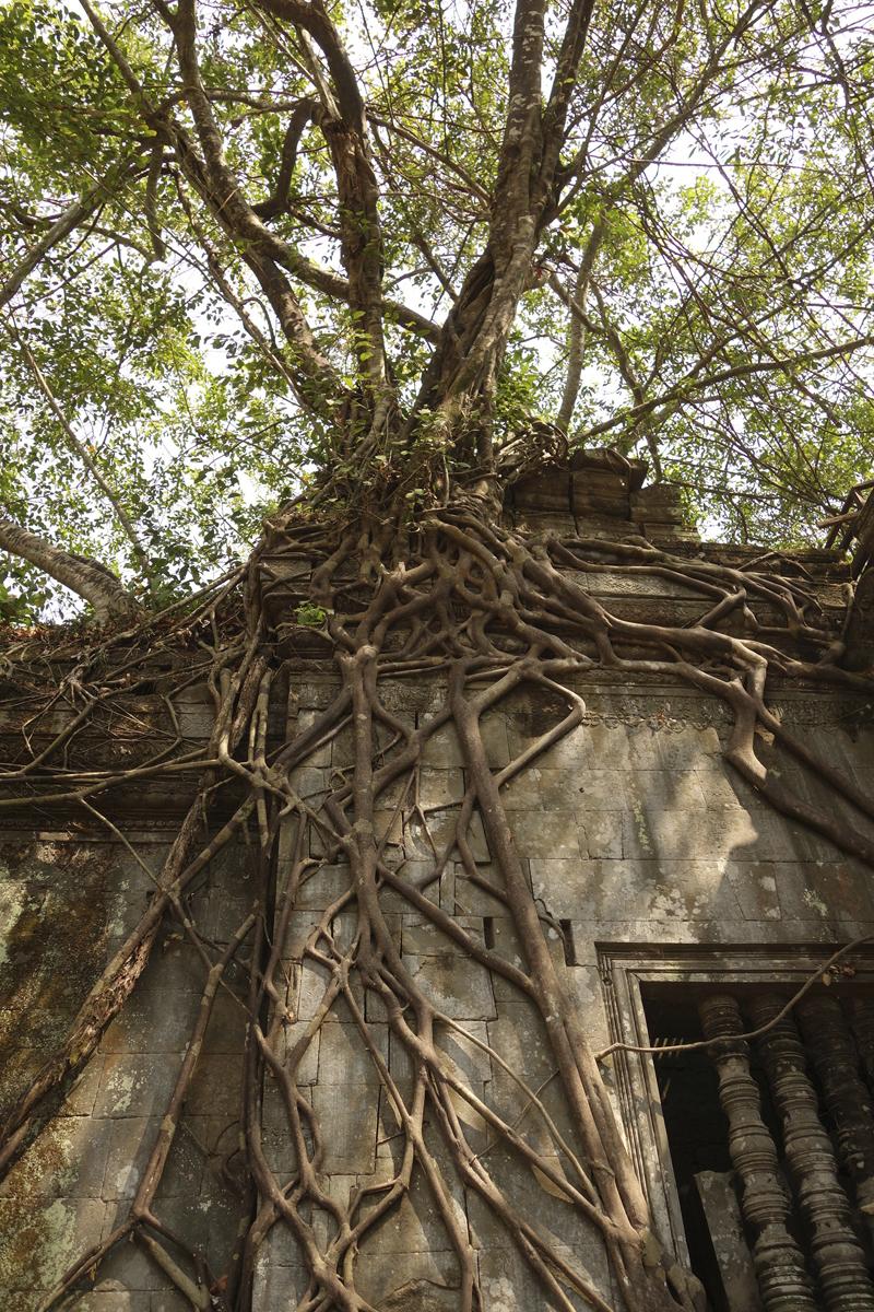 Mon voyage au temple de Beng Méaléa au Cambodge