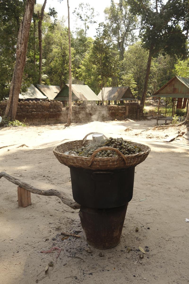 Mon voyage à Phnom Kulen au Cambodge