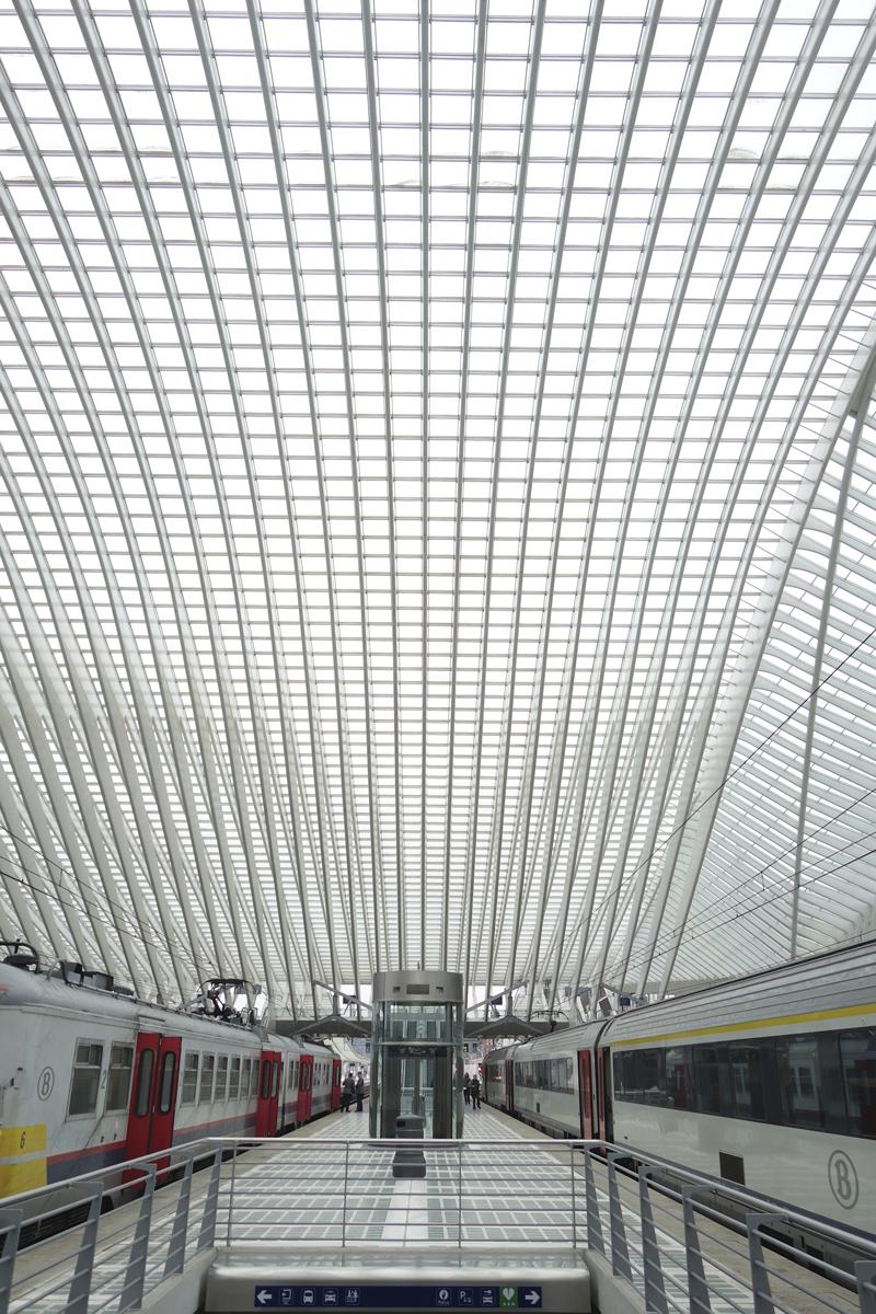 gare TGV de Liège-Guillemins à Liège en Belgique réalisée en 2009 par l'architecte Santiago Calatrava Valls