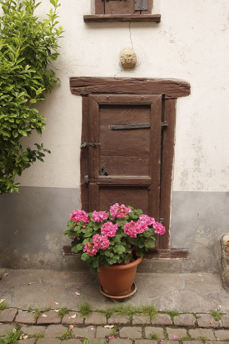 Mon voyage à Eguisheim en Alsace en France