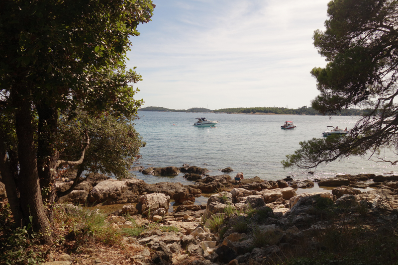 Mon voyage au Parc Naturel Golden Cape Forest à Rovinj en Croatie
