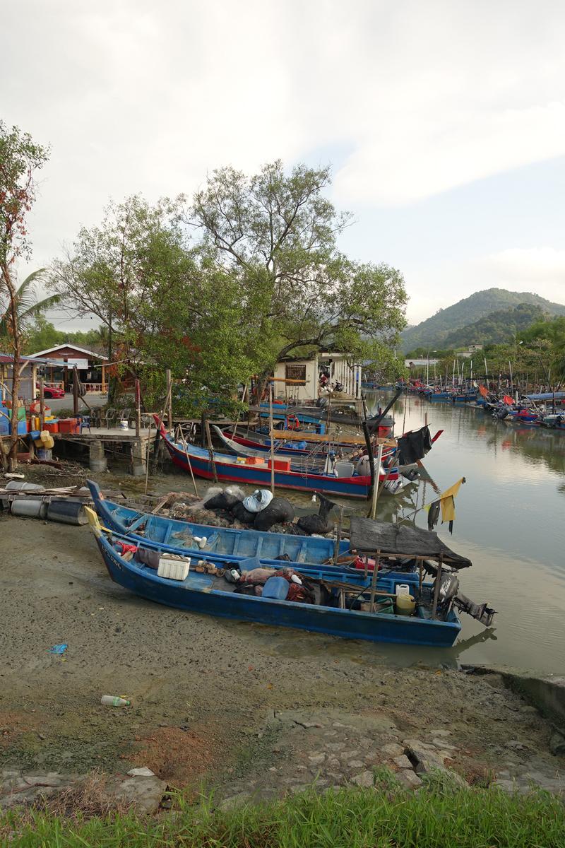 Mon voyage dans la campagne sur l'île de Penang en Malaisie
