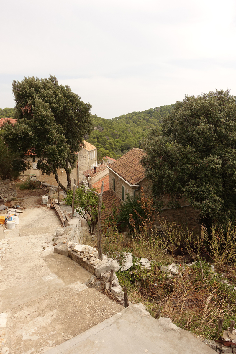 Mon voyage à Govedari sur l'île de Mljet en Croatie