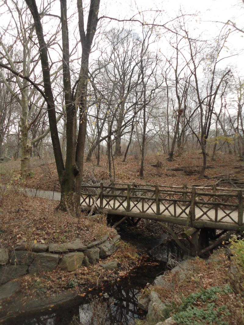Mon voyage à New York à Central-park